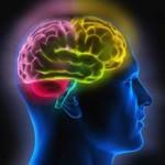 brain-test