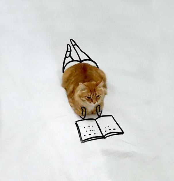 Весела котешка фотосесия
